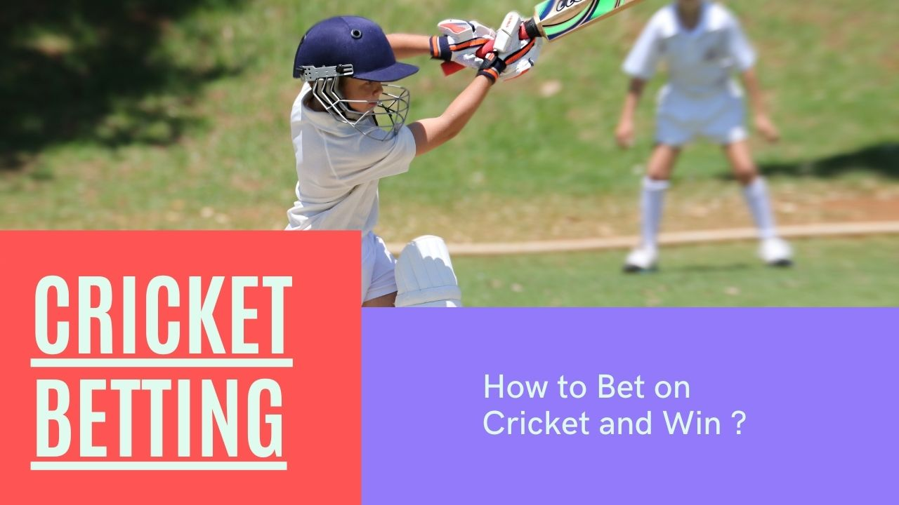 how to bet on cricket and win